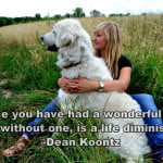 """Once you have had a wonderful dog, a life without one, is a life diminished."" —Dean Koontz Dog Quote"