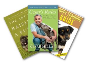 Books for training your dog